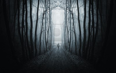 14402714-man-walking-on-a-path-in-a-strange-dark-forest-with-fog